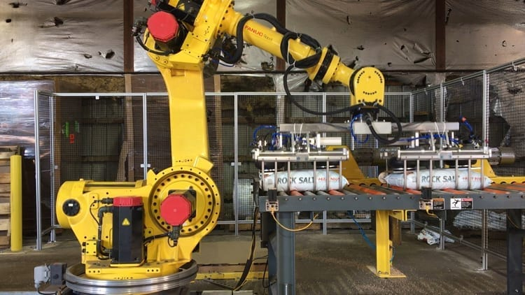 Used Fanuc palletizing robots and robotic cells for sale